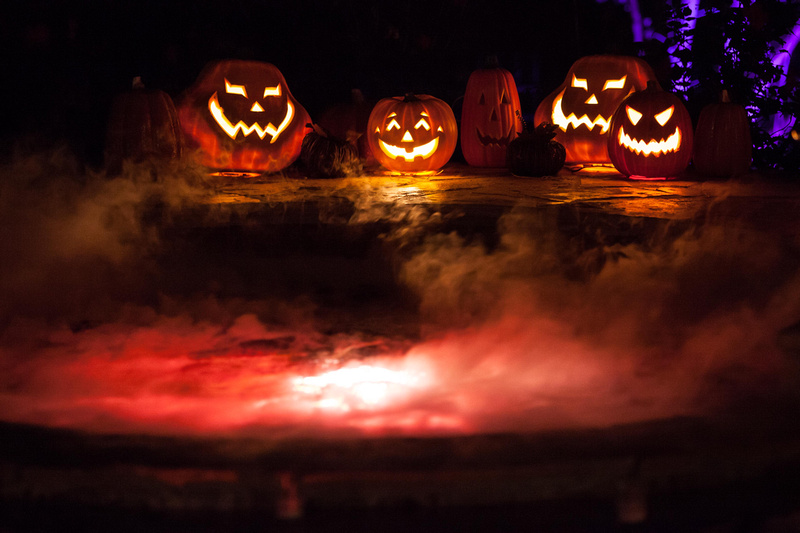 Halloween Ideas For Your Swimming Pool Grand Vista Pools